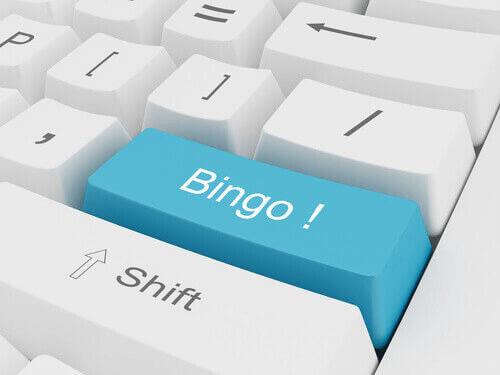 Bingo Online NZ